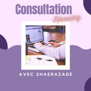 Consultation Réseauting